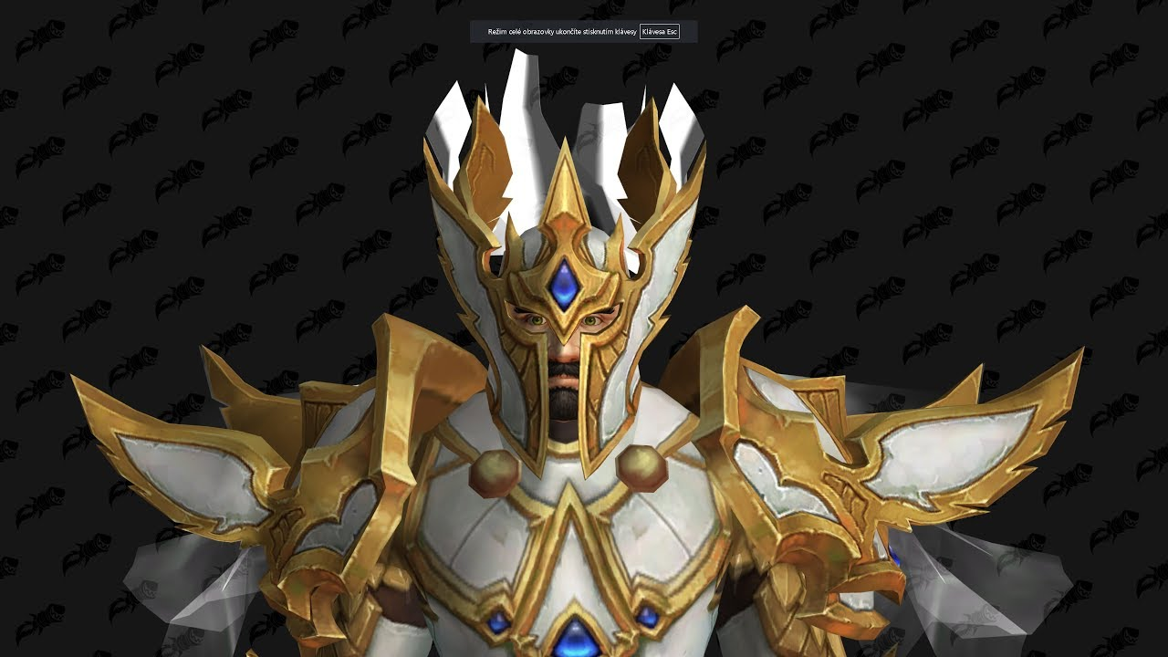 Paladin Tier 21 (T21) preview